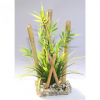 Sydeco Bamboo large plants, 25 cm hoch