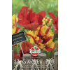 Tulpen ´Garden Fire & Flaming Parrot´ 12er Pack