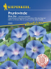 Prunkwinde (Ipomoea) Blue Star