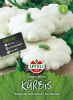 Kürbis Custard White
