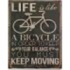"Blechschild Albert Einstein ""Life is like a bicycle..."" Nostalgie 25x33cm"